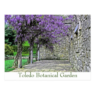 "POSTCARD, ""WISTERIA AND STONE WALL IN GARDEN"" POSTCARD"