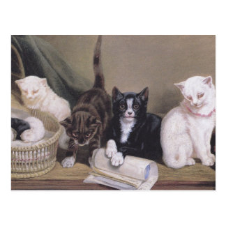 Postcard with painting of four cats and kittens