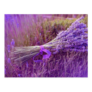 Postcards bouquet of lavenders