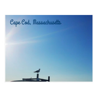 Postcards from Cape Cod (Seagull)