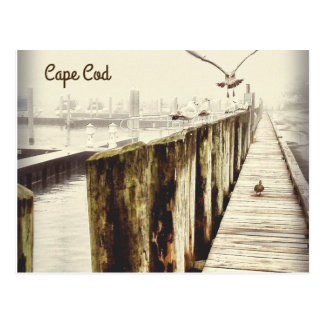 Postcards from Cape Cod (Seagull Harbor)