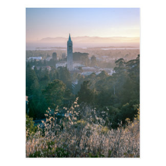 Postcards: University of California, Berkeley Postcard