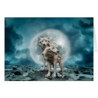 Postcards wolf