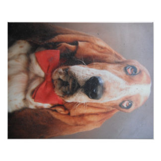 Poster Basset Hound With Red Bow Tie