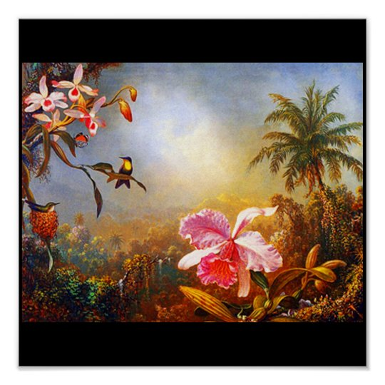Poster-Classic/Vintage-Martin Johnson Heade 16 Poster