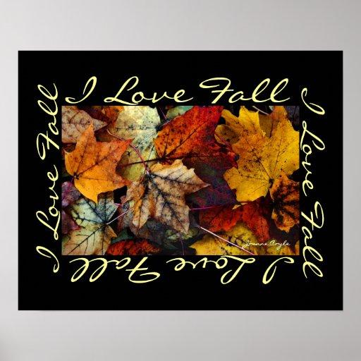 Poster - Fall Foliage