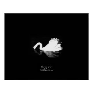 Poster, Hungry Swan, Black & White, Photography Poster
