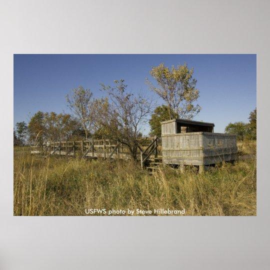 Poster / Missouri Wooden Wildlife Observation