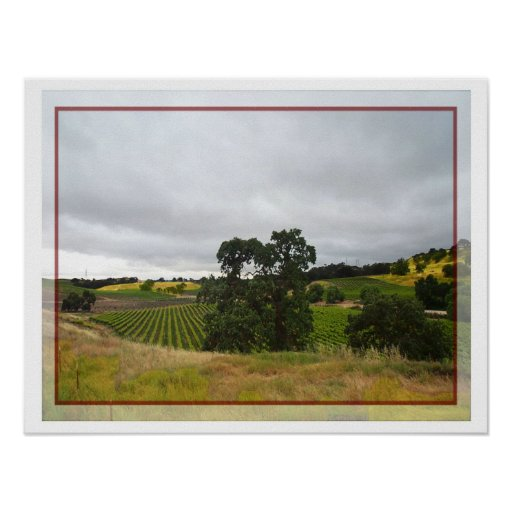 Poster of Paso Robles Wine Country
