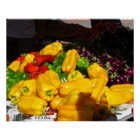 Poster – Peppers for Sale