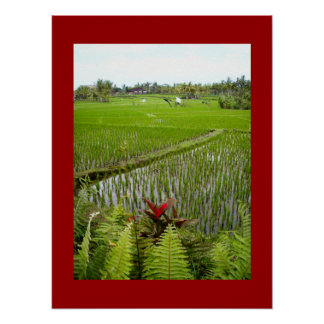 "Poster red  (18"" x 24"") The Flowering Ubud Bali"
