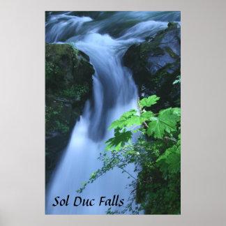 Poster: Sol Duc Falls