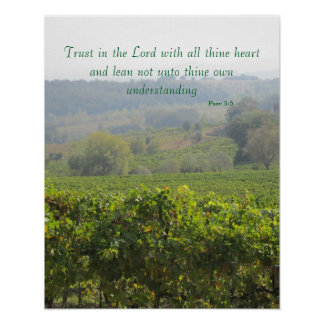 Poster--Tuscany Trust Poster