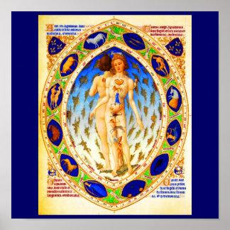 Poster-Vintage Astrology/Divination-1 Poster