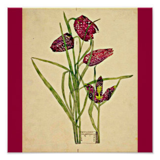 Poster-Vintage-Charles Rennie Mackintosh 20 Poster