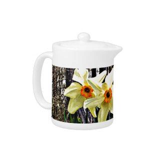 Posterized Daffodils