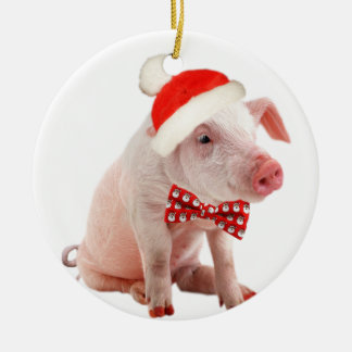 Pot Belly Pigs Christmas Ornament
