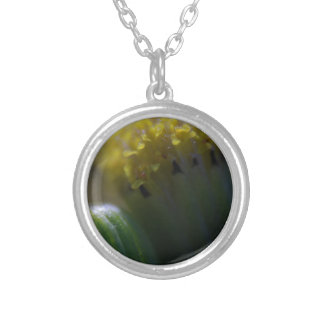 Pot of Gold Silver Plated Necklace