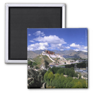Potala Palace on mountain range from aher Magnet