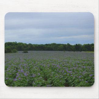 Potato Field Summer 2016 Mouse Pad