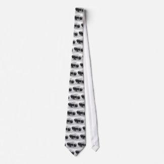 potbellied pig tie