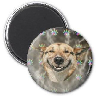 Pothead Dog 2 Inch Round Magnet
