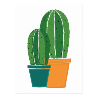Potted Cactus Postcard