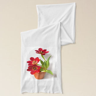 Potted Mature Red Tulips Photograph Scarf
