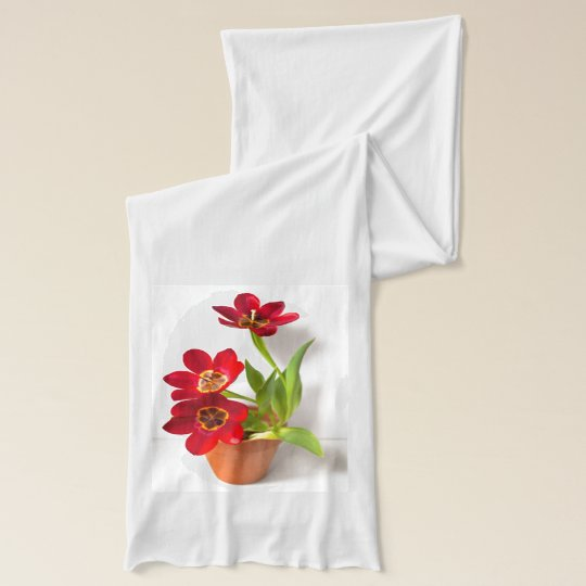 Potted Mature Red Tulips Photograph Scarf Wrap