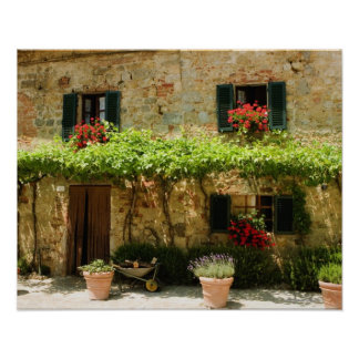 Potted plants outside a house, Piazza Roma, Poster
