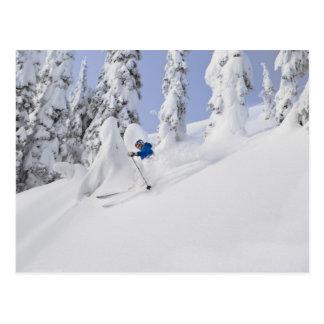 Poudre de skis de Mistie Fortin Cartes Postales