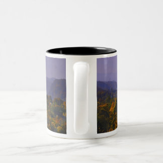 Poughkeepsie Rail Trail fall panorama mug