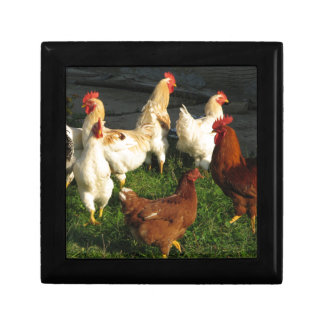 Poultry Jewelry Boxes