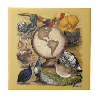 Poultry of the World Ceramic Tile