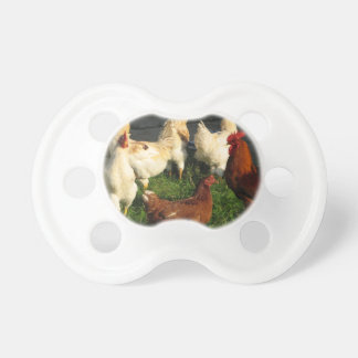 Poultry Pacifier