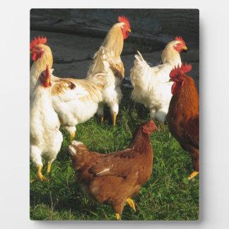 Poultry Plaque