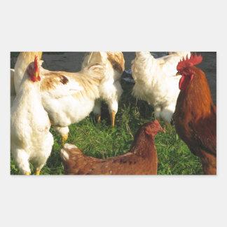 Poultry Sticker