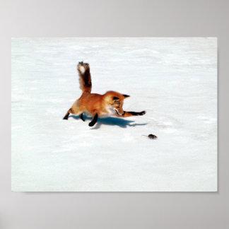Pouncing Fox Poster