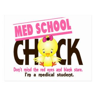 Poussin 2 d'école de Med Carte Postale
