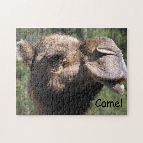 Pouting Camel Jigsaw Puzzle