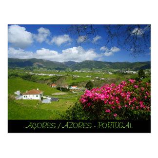 Povoação - Azores Postcard