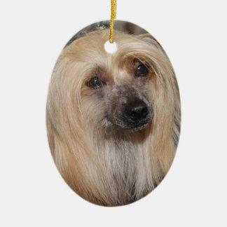POWDER PUFF CHINESE CRESTED DOG ORNAMENT
