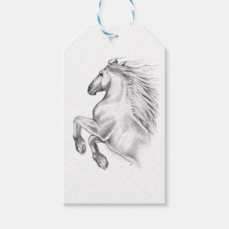 Powerful Andalusian Horse Gift Tags