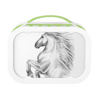 Powerful Andalusian Horse Lunch Box