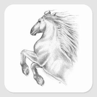 Powerful Andalusian Horse Square Sticker