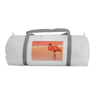 pPink flamingo in the water - 3D render Gym Bag