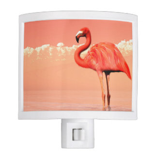 pPink flamingo in the water - 3D render Night Lites