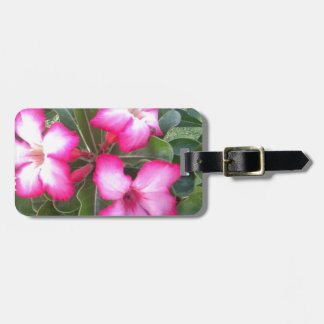 Ppink Luggage Tag