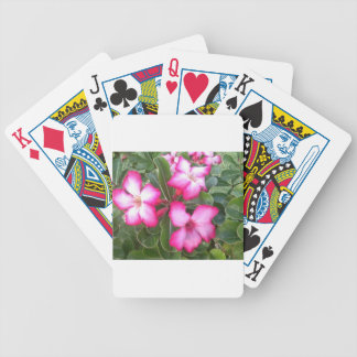 Ppink Poker Deck