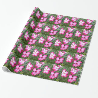 Ppink Wrapping Paper
